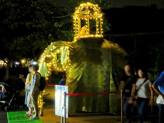東山動植物園ナイトZoo 2018 No - 71:スリランカの「ペラヘラ祭」風の装飾がなされてた象の像