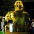 Photos: 東山動植物園ナイトZoo 2018 No - 71:スリランカの「ペラヘラ祭」風の装飾がなされてた象の像