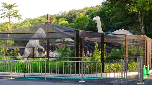 東山動植物園 2018年8月 No - 7:酷暑のためフラミンゴがいなかったフラミンゴ舎
