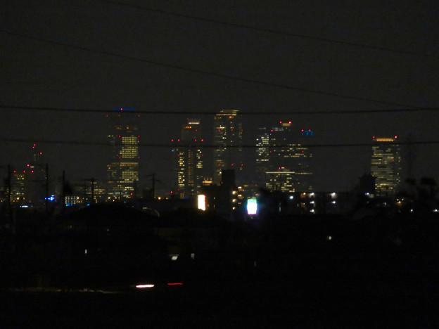 大池緑地から見た夜の名駅ビル群 - 3