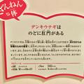 Photos: ざんねんないきもの展 2018 No - 4:デンキウナギの説明