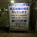 写真: 桃花台線撤去工事(2018年9月12日):やはり工事期間は2019年2月28日まで? - 1
