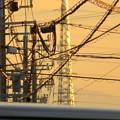 写真: 一瞬瀬戸デジタルタワーかと思った、夕焼けで輝く鉄塔 - 2
