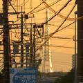 写真: 一瞬瀬戸デジタルタワーかと思った、夕焼けで輝く鉄塔 - 3