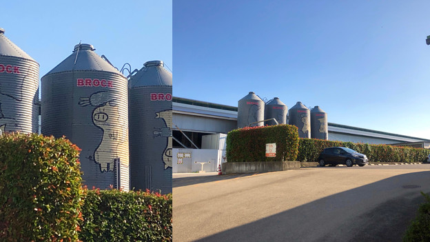 Camera7で撮影した「くりの木ランチ」のタンクに描かれた豚 - 3