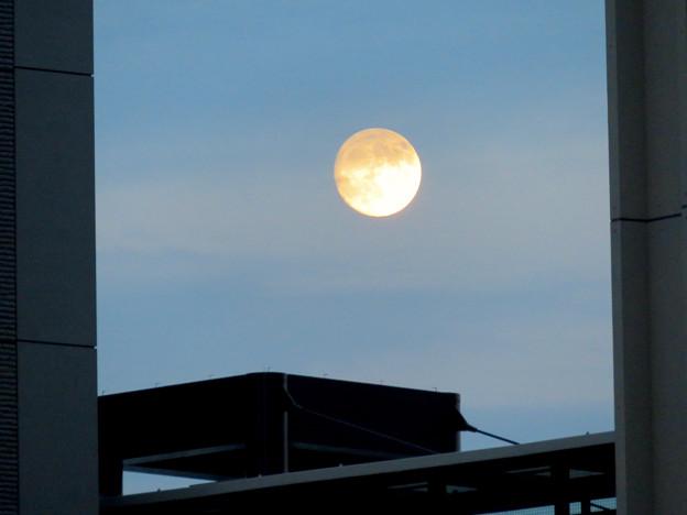 愛知大学の校舎の間から見えた昇ったばかりの満月(2018年9月23日) - 5