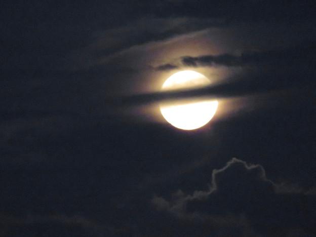 雲の隙間から顔をのぞかせてた中秋の満月(2018年9月24日) - 17