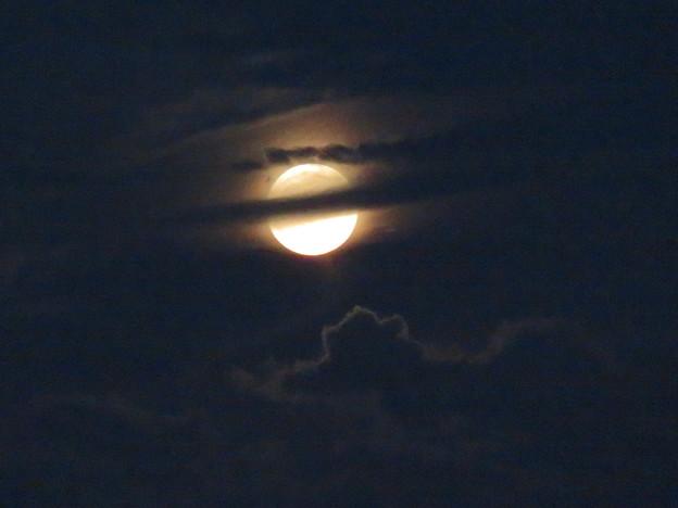 雲の隙間から顔をのぞかせてた中秋の満月(2018年9月24日) - 18