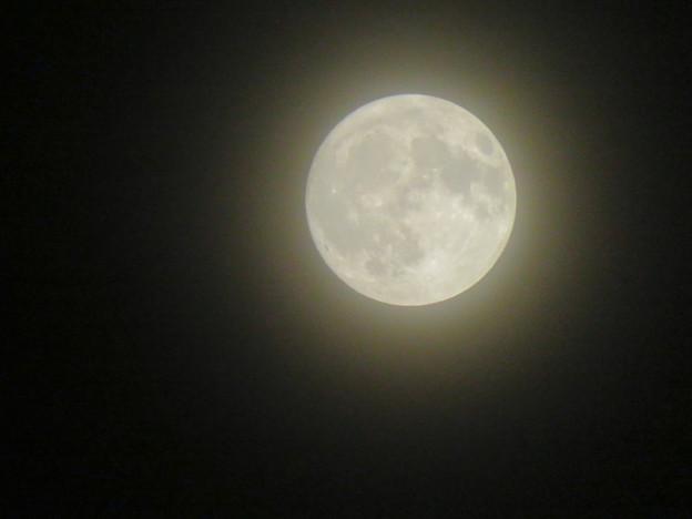 落合公園から見た薄曇りの中秋の満月(2018年9月24日) - 3
