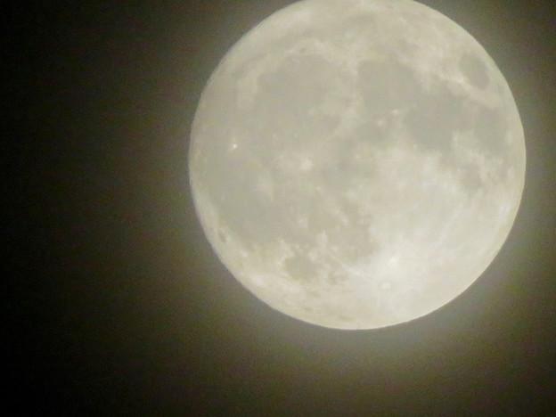 落合公園から見た薄曇りの中秋の満月(2018年9月24日) - 6