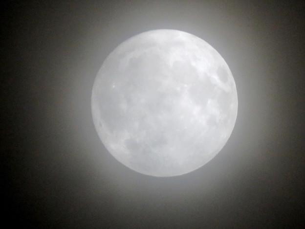 薄曇りの中秋の満月(2018年9月24日) - 2