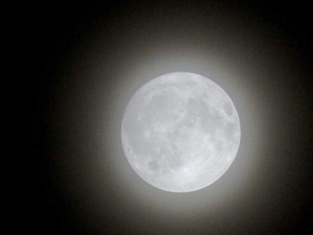 薄曇りの中秋の満月(2018年9月24日) - 4