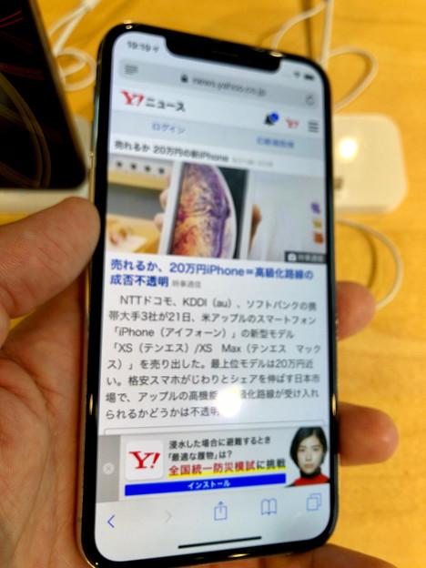 iPhone XS No - 5:Safari(※ピンぼけ)