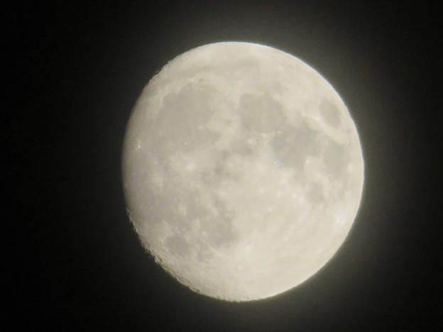 名古屋駅周辺で見上げた月(2018年9月22日) - 1