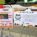 Photos: 久屋大通公園:動物フェスティバル 2018 No - 7(ネコのバスの紹介)