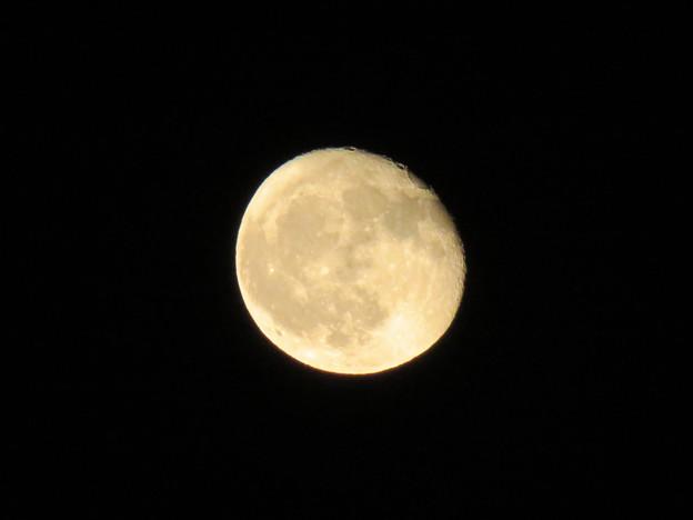 雲が晴れてくっきり見えた今日の満月(2018年9月27日) - 5