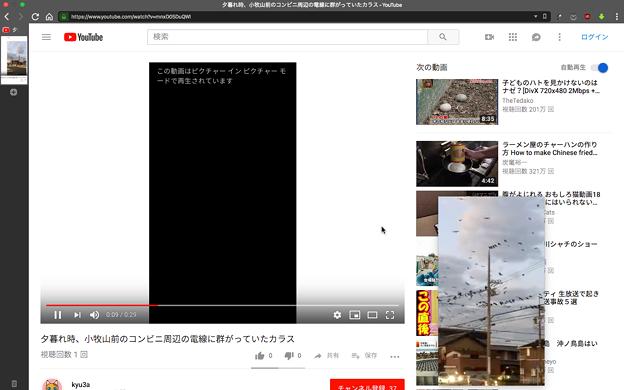 Vivaldi 2.1.1332.4:YouTubeなどで使えるビデオポップアウト機能を搭載! - 11(縦長動画も利用可能)