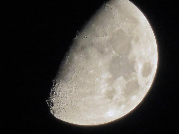 写真: 半月(2018年10月18日)