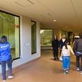 Photos: 東山動植物園:新ゴリラ・チンパンジー舎 - 5