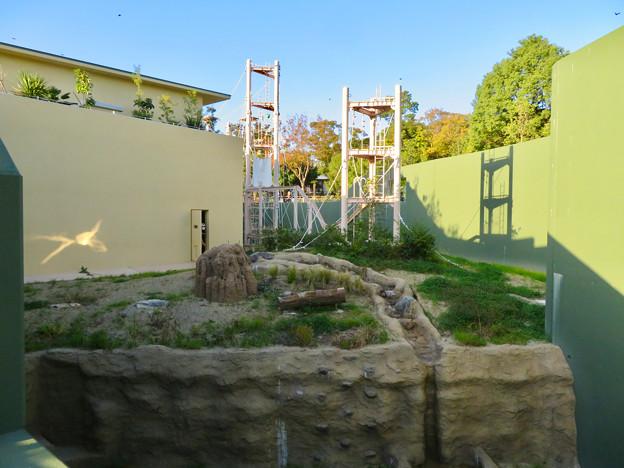 東山動植物園:新ゴリラ・チンパンジー舎 - 30