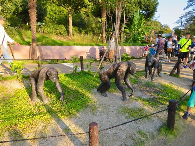 東山動植物園:新ゴリラ・チンパンジー舎 - 36(チンパンジーの像)