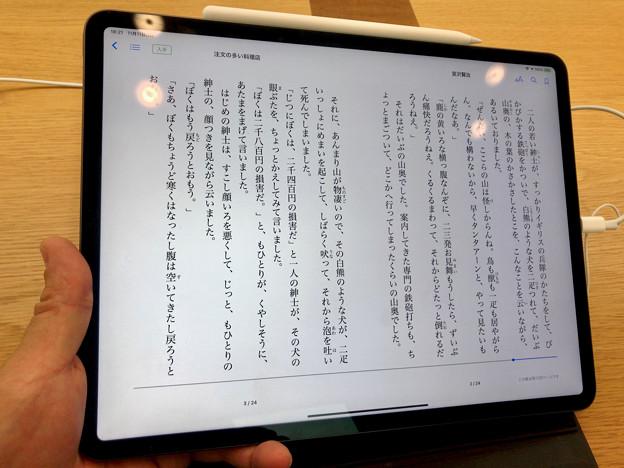 iPad Pro 12.9インチ 2018 No - 5:ブックアプリで小説を閲覧