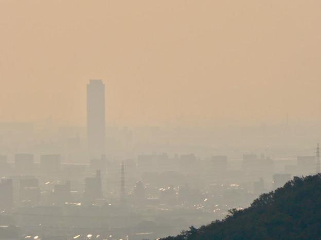 定光寺展望台から見た景色 - 5:ザ・シーン城北