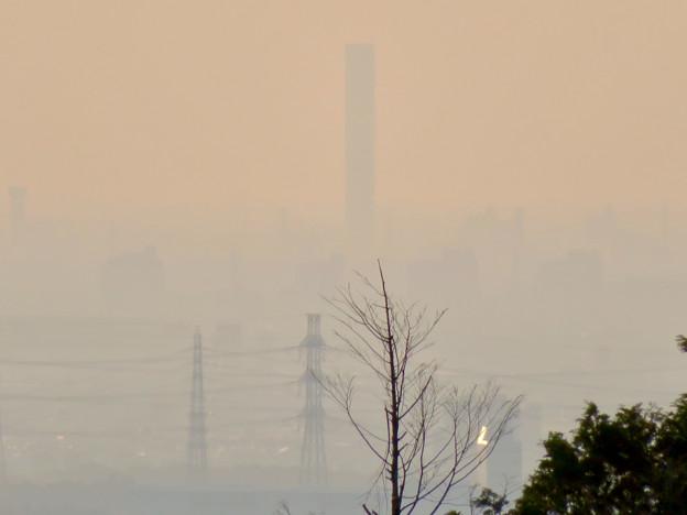 定光寺展望台から見た景色 - 12:三菱電機稲沢製作所のエレベーター試験棟