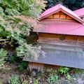 Photos: 定光寺川沿いにある「薬膳茶ソイビーンフラワー at きらら」 - 1