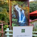 定光寺川沿いにある薬膳茶「薬膳茶ソイビーンフラワー at きらら」 - 4:お店の看板