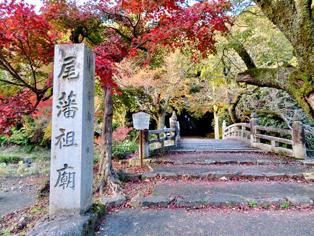 秋の定光寺 No - 82:直入橋(ちょくにゅうばし)と紅葉した木々