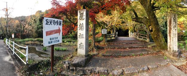 秋の定光寺 No - 85:直入橋(ちょくにゅうばし)と紅葉した木々(パノラマ)