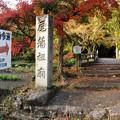 Photos: 秋の定光寺 No - 85:直入橋(ちょくにゅうばし)と紅葉した木々(パノラマ)