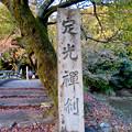 Photos: 秋の定光寺 No - 86