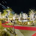 すごく雰囲気が良かった、大名古屋ビルヂング5階「スカイガーデン」のクリスマス・イルミネーション - 1