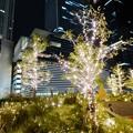 写真: すごく雰囲気が良かった、大名古屋ビルヂング5階「スカイガーデン」のクリスマス・イルミネーション - 3