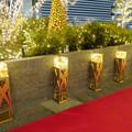 写真: すごく雰囲気が良かった、大名古屋ビルヂング5階「スカイガーデン」のクリスマス・イルミネーション - 8