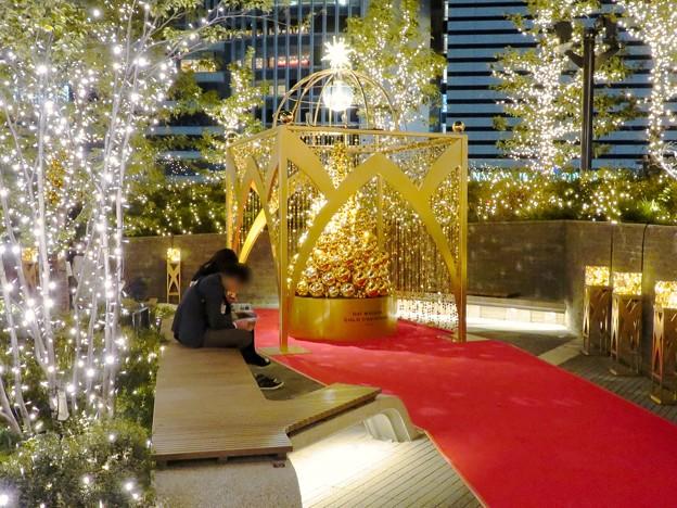 すごく雰囲気が良かった、大名古屋ビルヂング5階「スカイガーデン」のクリスマス・イルミネーション - 15