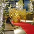 写真: すごく雰囲気が良かった、大名古屋ビルヂング5階「スカイガーデン」のクリスマス・イルミネーション - 15