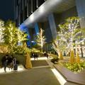 写真: すごく雰囲気が良かった、大名古屋ビルヂング5階「スカイガーデン」のクリスマス・イルミネーション - 21