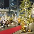 写真: すごく雰囲気が良かった、大名古屋ビルヂング5階「スカイガーデン」のクリスマス・イルミネーション - 25