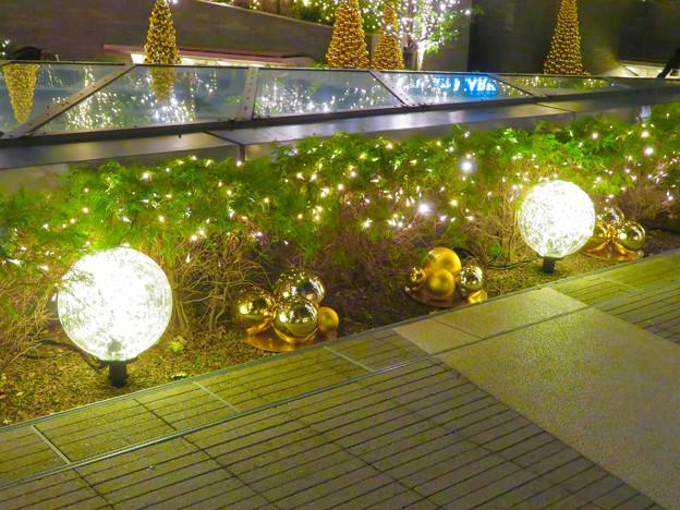すごく雰囲気が良かった、大名古屋ビルヂング5階「スカイガーデン」のクリスマス・イルミネーション - 30