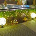 写真: すごく雰囲気が良かった、大名古屋ビルヂング5階「スカイガーデン」のクリスマス・イルミネーション - 30
