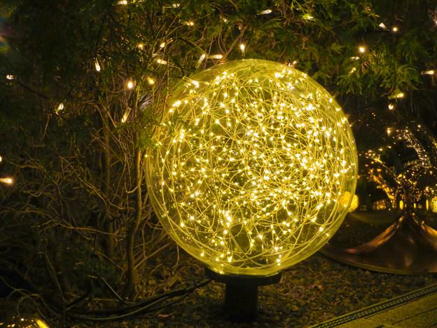 すごく雰囲気が良かった、大名古屋ビルヂング5階「スカイガーデン」のクリスマス・イルミネーション - 31