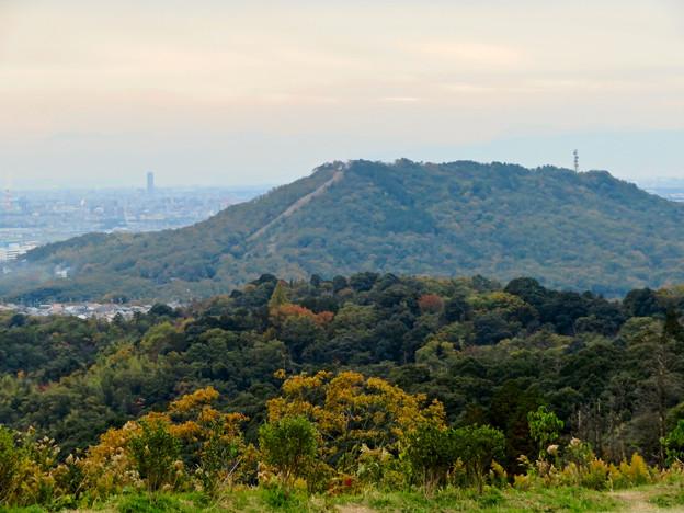 定光寺展望台から見た景色:自衛隊の訓練施設(?)がある高座山 - 2