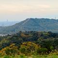 Photos: 定光寺展望台から見た景色:自衛隊の訓練施設(?)がある高座山 - 2