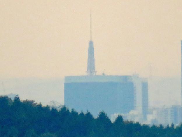 定光寺展望台から見た景色:名古屋テレビ塔 - 3