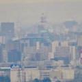 定光寺展望台から見た景色:名古屋城 - 6