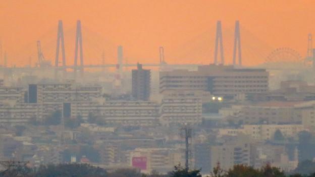 定光寺展望台から見た景色:名港中央大橋とシートレインランドの大観覧車 - 1