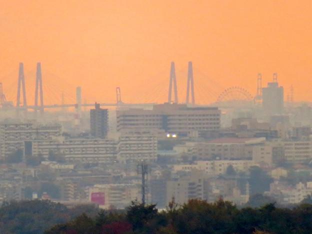 定光寺展望台から見た景色:名港中央大橋とシートレインランドの大観覧車 - 3